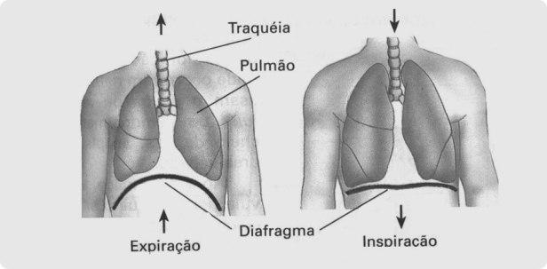 Resultado de imagem para VENCENDO O STRES PELA RESPIRAÇÃO - A Respiração Diafragmática e o Stres